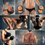 Collage fitness workout. Collage of women and men with muscular bodies during workout stock images
