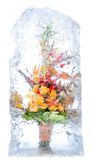 Bouquet sensible des fleurs dans la glace Photo stock