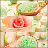 Collage floreale di serie della stazione termale del sale del bagno d'acqua del collage di benessere Immagini Stock