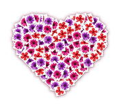 Collage of flowers in the shape of heart Stock Images