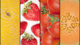 Collage of four seasonal fruits Royalty Free Stock Image