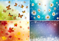 Collage of four seasons Stock Photo