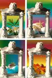 Collage with four seasons in photo frame Stock Photos