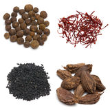 Collage of four spices Royalty Free Stock Images