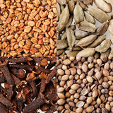 Collage of four  spices. Stock Photo