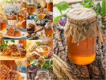 Collage från honung och honungskakor Uppsättning av honung royaltyfri bild