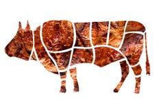 Collage från olika foto av grillat kött royaltyfria foton