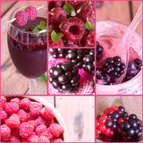Collage of fresh berries Royalty Free Stock Images