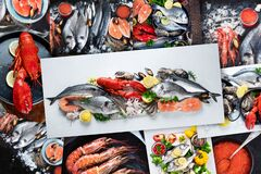 Collage of Fresh fish and seafood