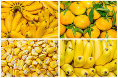 Collage from fresh fruit and vegetables Stock Images