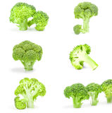 Collage of fresh green broccoli isolated on a white background with clipping path. Collage of fresh green broccoli isolated on a white background Stock Images