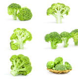 Collage of fresh green broccoli isolated on white. Group of fresh green broccoli over a white background Stock Images