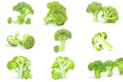 Collage of fresh green broccoli over a white background. Set of fresh raw broccoli Stock Photography