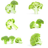 Collage of fresh green broccoli. Set of broccoli floret isolated on a white background with clipping path Stock Images