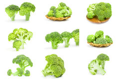 Collage of fresh raw broccoli on a isolated white background. Set of broccoli cabbage isolated on a white background cutout Royalty Free Stock Photos