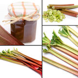 Collage with fresh rhubarb and rhubarb jam Royalty Free Stock Photos