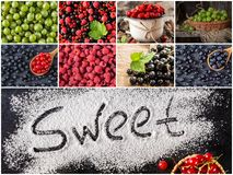 Collage of fresh ripe berries. Healthy vegan food. Set of various berries as background. Collection of color ripe berries royalty free stock images