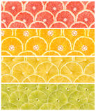 Collage Of Fresh Summer Fruits Stock Photography