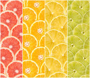 Collage Of Fresh Summer Fruits Stock Image