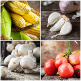 Collage of fresh vegetables. Corns, mushrooms, tomatoes and garl Royalty Free Stock Photo