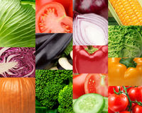 Collage of fresh vegetables . Healthy food concept Royalty Free Stock Photography