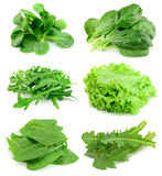 Collage From Salad Stock Image