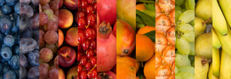 Collage of fruits varitety Stock Photos