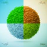 collage fyra säsonger vinter för höstfjädersommar Gräscirc Fotografering för Bildbyråer