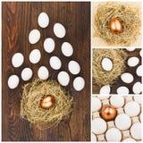 Collage gemacht von den verschiedenen Bildern von Hühnereien, hölzerner Hintergrund Lizenzfreie Stockfotos