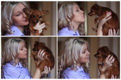 Collage, girl with a dog Royalty Free Stock Images