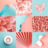 Collage gjorde av nio foto i korallfärg royaltyfri foto