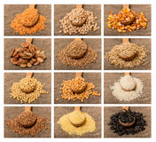 Collage from grain. In a wooden pot on a burlap sack. Barley, sunflowers, chickpeas, millet, beans, soy, buckwheat, rice, peas, corn, wheat and oats royalty free stock photo