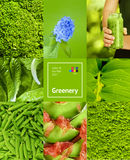 Collage with green color Royalty Free Stock Photography