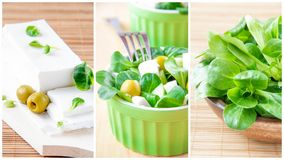 Collage of green greek salad Stock Image