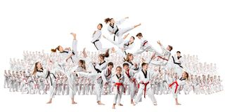 The collage about group of kids training karate martial arts. And posing on white backlground. The attack, sport, taekwondo, children activity concept royalty free stock photo