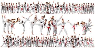 The collage about group of kids training karate martial arts stock image