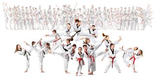 The collage about group of kids training karate martial arts. And posing on white backlground. The attack, sport, taekwondo, children activity concept royalty free stock photography