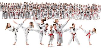 The collage about group of kids training karate martial arts. And posing on white backlground. The attack, sport, taekwondo, children activity concept stock photography