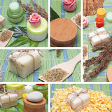 Collage of handmade Soap with natural ingredients Stock Image
