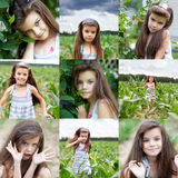 Collage, Happy little girl on corn field Royalty Free Stock Photography