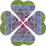 A collage of hearts folded into a four-leafed flower. Filling dr. Awing from natural flower stock images