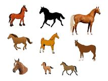 Collage of Horses Stock Photo
