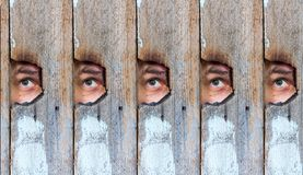 Collage of the human eye, voyeur spying through a hole in the old wooden fence Stock Photo
