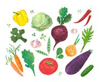 Collage with illustration of vegetables Stock Photo