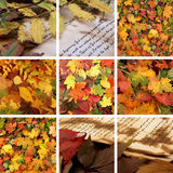 A collage of images with beautiful Autumn leaves Royalty Free Stock Photo