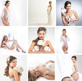 A collage of images with brides in wedding dresses Stock Photos