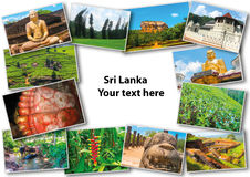 Collage from images of Sri Lanka Stock Photos