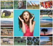 Collage from images of wildlife and beautiful views of the Kenya stock images