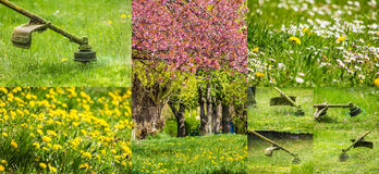 Collage images work in garden and lawn with  gasoline trimmer. Collage images work in garden and dandelion and chamomile lawn with  gasoline trimmer cutting Royalty Free Stock Photo
