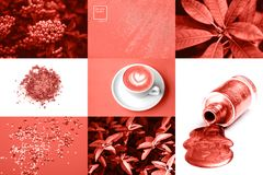 Collage in Living Coral color. Trendy color concepf of the year. stock photos